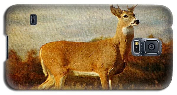 Majestic Pose Galaxy S5 Case by Blair Wainman