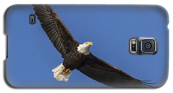 Majestic Galaxy S5 Case