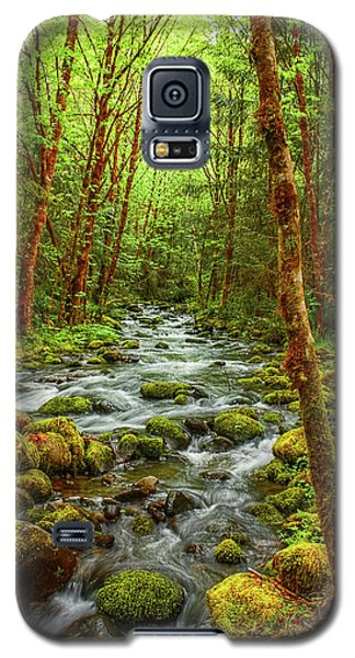 Galaxy S5 Case featuring the photograph Majestic Stream by Tyra  OBryant