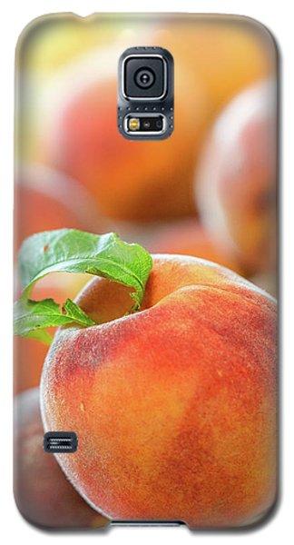 Make A Cobbler Galaxy S5 Case