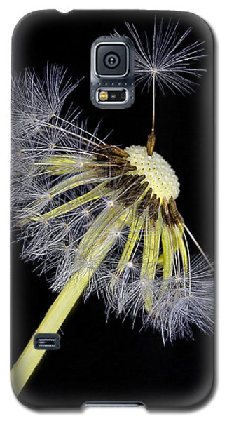 Make A Wish Galaxy S5 Case