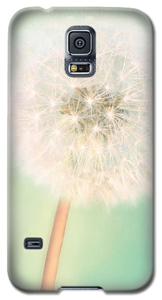 Galaxy S5 Case featuring the photograph Make A Wish - Square Version by Amy Tyler