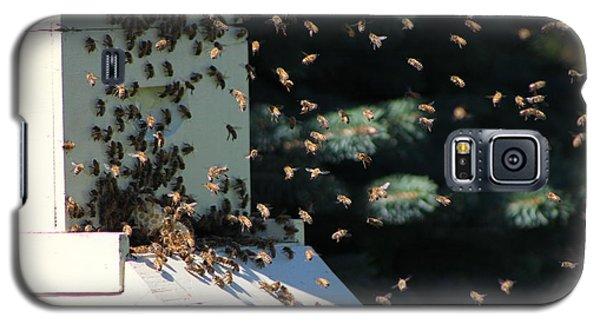Making Honey - Landscape Galaxy S5 Case