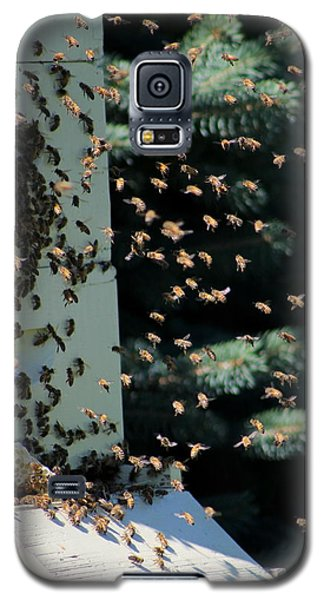 Making Honey - Portrait Galaxy S5 Case