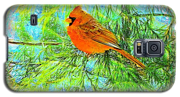 Male Cardinal In Juniper Tree Galaxy S5 Case