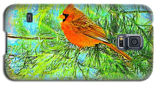 Male Cardinal In Juniper Tree Galaxy S5 Case