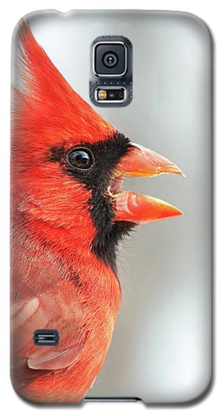 Male Cardinal In Profile Galaxy S5 Case