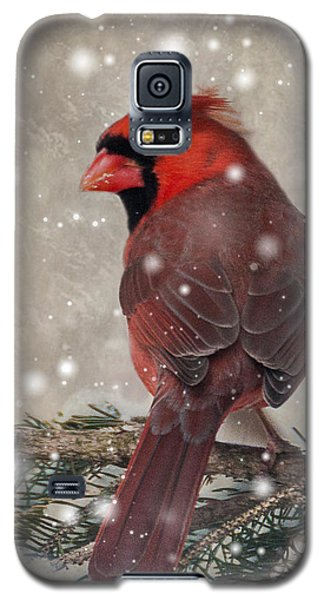 Male Cardinal In Snow #1 Galaxy S5 Case