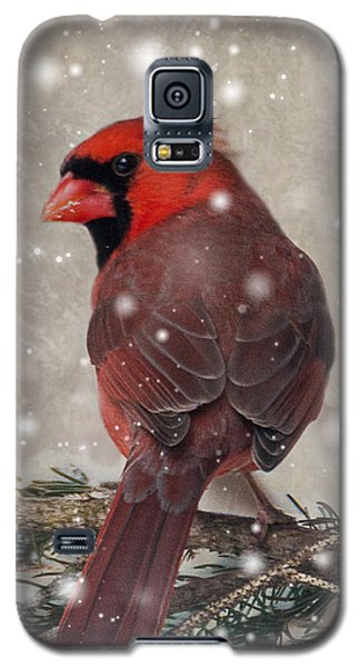 Male Cardinal In Snow #1 Galaxy S5 Case