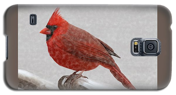 Male Cardinal In Snow Galaxy S5 Case