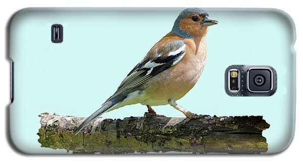 Galaxy S5 Case featuring the photograph Male Chaffinch, Blue Background by Paul Gulliver