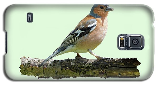 Male Chaffinch, Green Background Galaxy S5 Case by Paul Gulliver