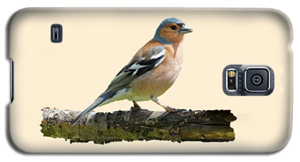 Male Chaffinch, Transparent Background Galaxy S5 Case by Paul Gulliver