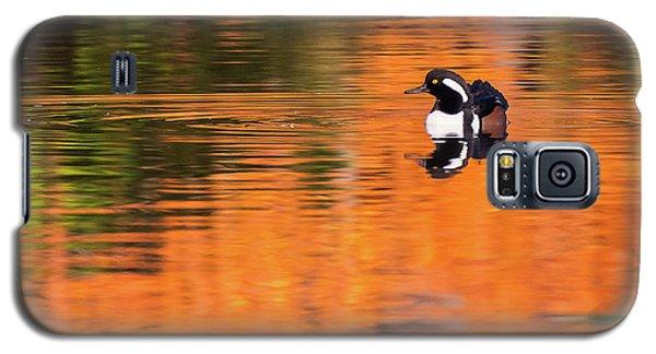Male Hooded Merganser In Autumn Galaxy S5 Case