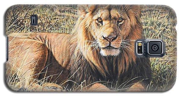 Male Lion Portrait Galaxy S5 Case