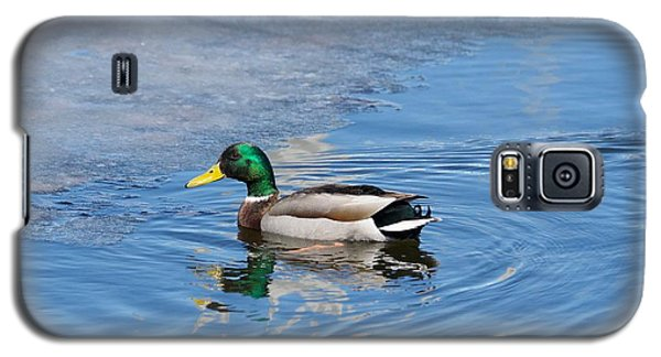 Galaxy S5 Case featuring the photograph Male Mallard Duck by Michael Peychich