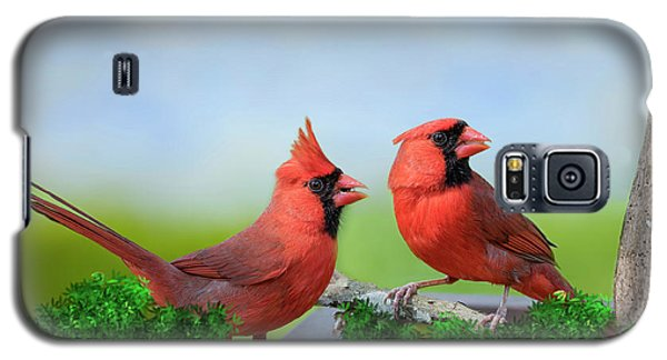 Galaxy S5 Case featuring the photograph Male Northern Cardinals In Spring by Bonnie Barry