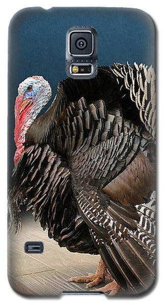 Male Turkey Strutting Galaxy S5 Case