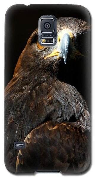 Maleficent Golden Eagle Galaxy S5 Case