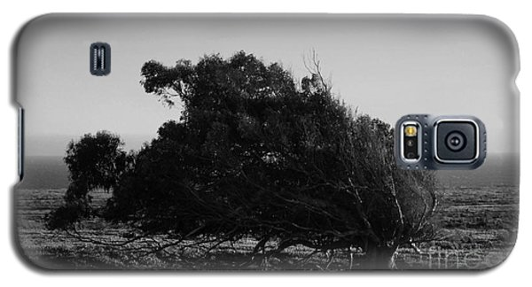 Galaxy S5 Case featuring the photograph Malformed Treeline by Clayton Bruster