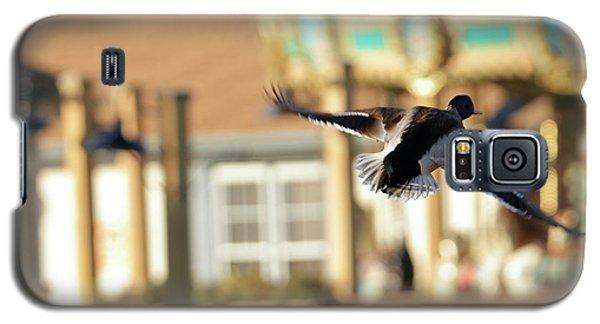 Mallard Duck And Carousel Galaxy S5 Case