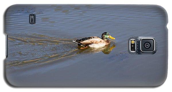 Mallard Duck Burgess Res Co Galaxy S5 Case