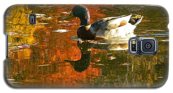 Mallard Duck In The Fall Galaxy S5 Case