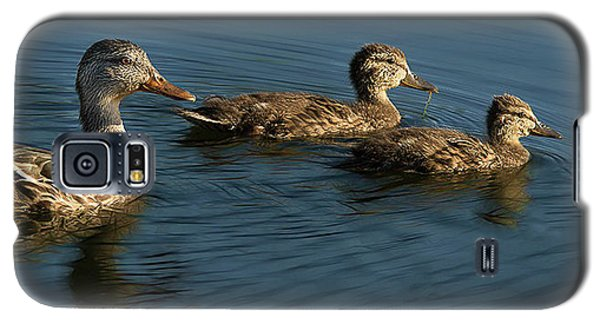 Galaxy S5 Case featuring the photograph Mallard Family Outing by Jean Noren