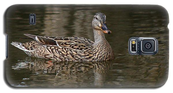 Galaxy S5 Case featuring the photograph Mallard Hen by Elaine Malott