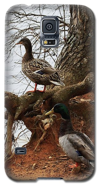 Galaxy S5 Case featuring the photograph Mallard by Kim Henderson