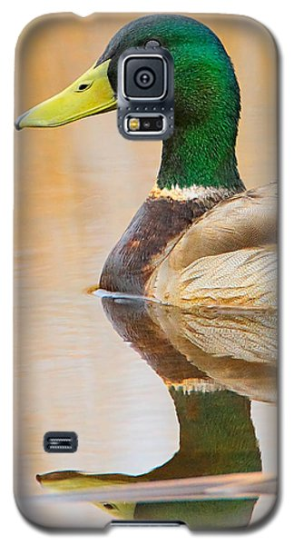 Mallard Mirror Galaxy S5 Case