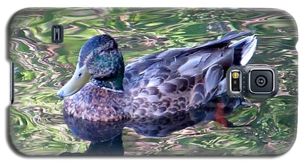 Mallard Monet Galaxy S5 Case