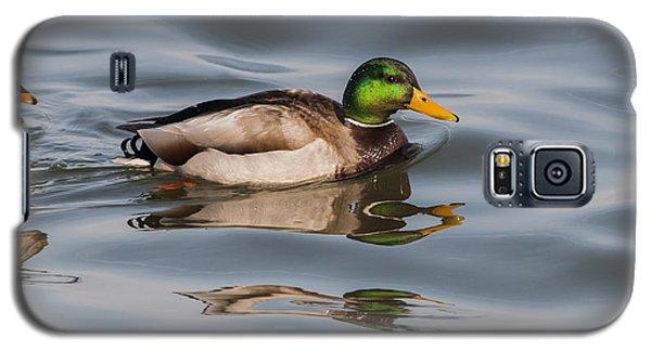 Mallards And Reflection Galaxy S5 Case