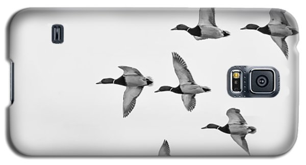 Galaxy S5 Case featuring the photograph Mallards by Dan Traun