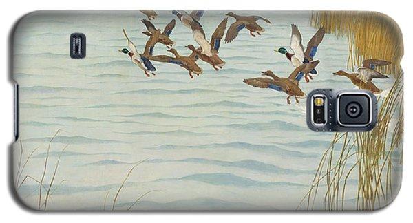 Mallards In Autumn Galaxy S5 Case