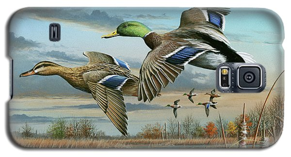 Mallards In Flight Galaxy S5 Case by Mike Brown