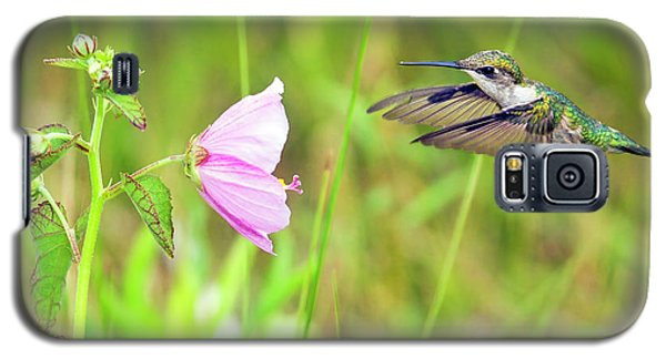 Galaxy S5 Case featuring the photograph Mallow Hummer by Gary Holmes