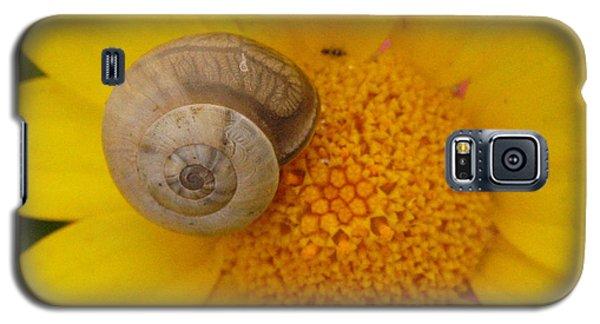 Malta Flower Galaxy S5 Case