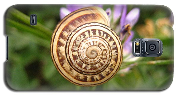Malta Snail Galaxy S5 Case