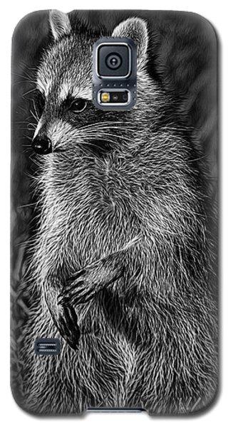 Mama Raccoon Galaxy S5 Case