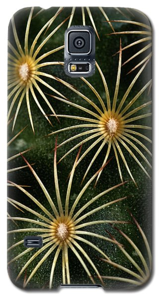 Galaxy S5 Case featuring the photograph mammillaria elongata Cactus  by Catherine Lau