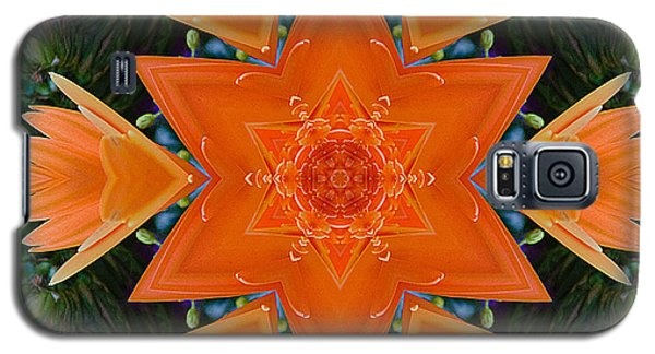 Mandala Star Galaxy S5 Case