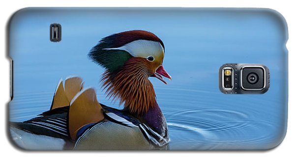 Majestic Mandarin Duck Galaxy S5 Case