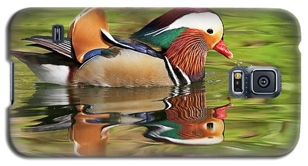 Mandarin Duck Galaxy S5 Case