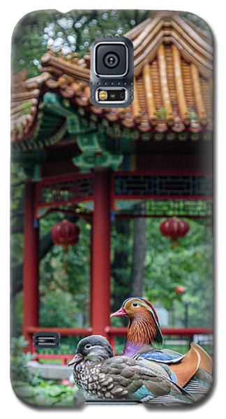 Mandarin Ducks At Pavilion Galaxy S5 Case