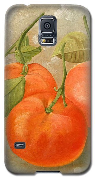 Mandarins Galaxy S5 Case