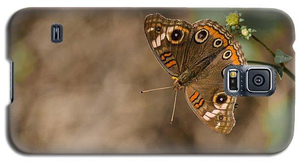 Mangrove Buckeye Butterfly Galaxy S5 Case