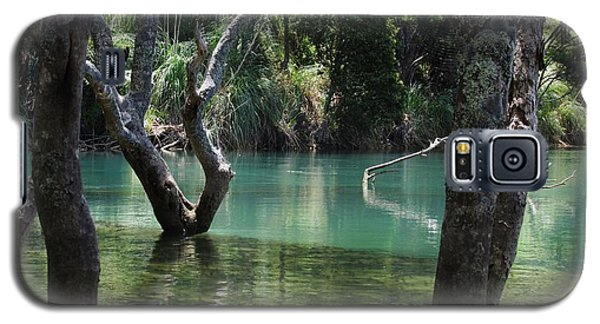 Galaxy S5 Case featuring the photograph Mangrove Mystique by Dianne  Connolly