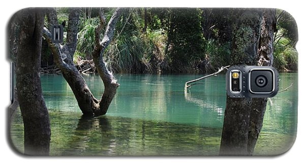 Mangrove Mystique Galaxy S5 Case by Dianne  Connolly