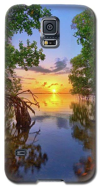 Mangrove Sunset From Jensen Beach Florida Galaxy S5 Case by Justin Kelefas